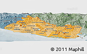 Political Shades Panoramic Map of El Salvador, semi-desaturated