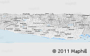 Silver Style Panoramic Map of El Salvador
