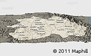 Shaded Relief Panoramic Map of Debub, darken