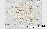 Shaded Relief 3D Map of Amhara, desaturated