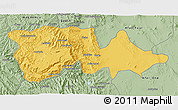 Savanna Style 3D Map of North Wello