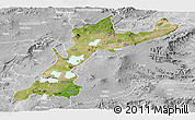 Satellite Panoramic Map of East Shewa, lighten, desaturated