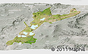 Satellite Panoramic Map of East Shewa, lighten, semi-desaturated