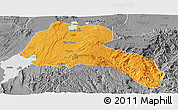 Political Panoramic Map of Sidama, desaturated