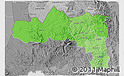 Political Shades 3D Map of Tigray, desaturated