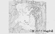 Silver Style 3D Map of East