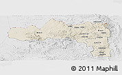 Shaded Relief Panoramic Map of Tigray, lighten, desaturated