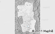 Gray Map of South