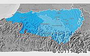 Political Shades 3D Map of Pyrénées-Atlantiques, desaturated