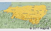 Savanna Style 3D Map of Pyrénées-Atlantiques