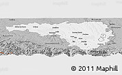 Gray Panoramic Map of Pau