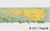 Savanna Style Panoramic Map of Pau