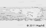 Silver Style Panoramic Map of Pau