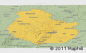 Savanna Style Panoramic Map of Côte-d'Or