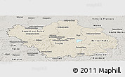Shaded Relief Panoramic Map of Aube, semi-desaturated