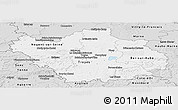 Silver Style Panoramic Map of Aube