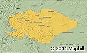 Savanna Style 3D Map of Reims