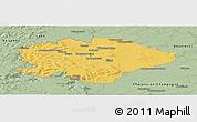Savanna Style Panoramic Map of Reims