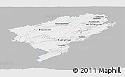 Gray Panoramic Map of Doubs, single color outside