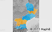 Political Map of Languedoc-Roussillon, desaturated
