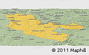 Savanna Style Panoramic Map of Moselle