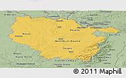 Savanna Style Panoramic Map of Lorraine