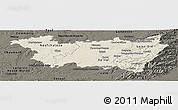 Shaded Relief Panoramic Map of Vosges, darken