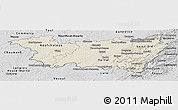 Shaded Relief Panoramic Map of Vosges, desaturated