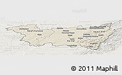 Shaded Relief Panoramic Map of Vosges, lighten