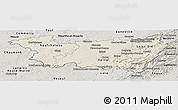 Shaded Relief Panoramic Map of Vosges, semi-desaturated