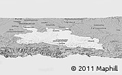 Gray Panoramic Map of Pamiers