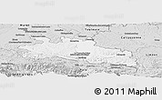 Silver Style Panoramic Map of Pamiers