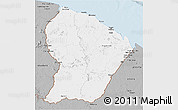 Gray 3D Map of French Guiana
