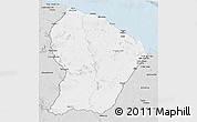 Silver Style 3D Map of French Guiana