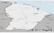 Gray Panoramic Map of French Guiana