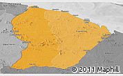 Political Shades Panoramic Map of French Guiana, desaturated