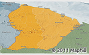 Political Shades Panoramic Map of French Guiana, semi-desaturated