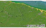 Satellite Panoramic Map of French Guiana