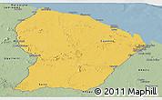 Savanna Style Panoramic Map of French Guiana