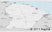Silver Style Panoramic Map of French Guiana