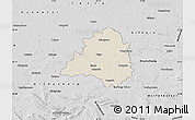 Shaded Relief Map of Peine, desaturated