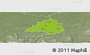Physical Panoramic Map of Peine, semi-desaturated