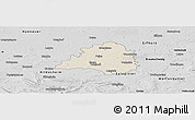 Shaded Relief Panoramic Map of Peine, desaturated