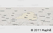 Shaded Relief Panoramic Map of Peine, semi-desaturated