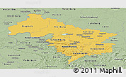 Savanna Style Panoramic Map of Hannover