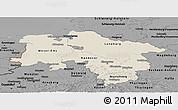 Shaded Relief Panoramic Map of Niedersachsen, darken, desaturated