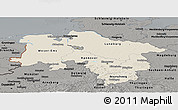 Shaded Relief Panoramic Map of Niedersachsen, darken, semi-desaturated