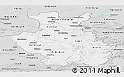 Silver Style Panoramic Map of Detmold