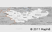 Gray Panoramic Map of Köln