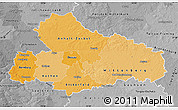 Political Shades Map of Dessau, desaturated